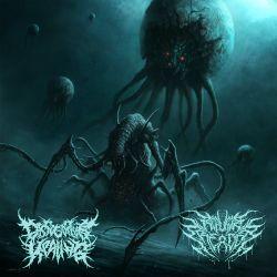 "Dissociative Healing/Repulsive Creation ""Rakka Split"" (CD)"
