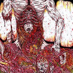 "Meat Shits ""Bowel Rot"" (CD)"