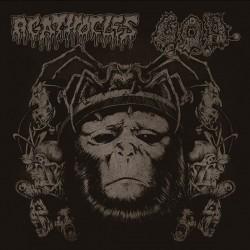 """Agathocles/G.O.D. """"Split"""" (DigipakCD)"""