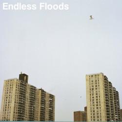 "Endless Floods ""II"" (LP)"