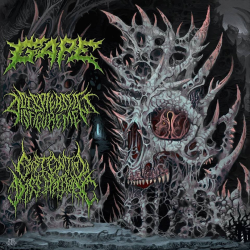 "Gape/Displeased Disfigurement/Existential Dissipation ""International Solidification 3 Way Split"" (CD)"