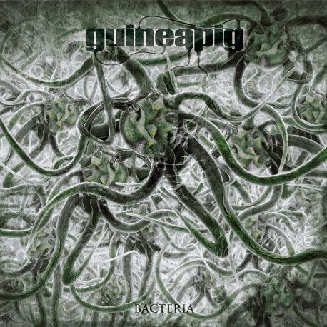 "Guineapig ""Bacteria"" (LP)"