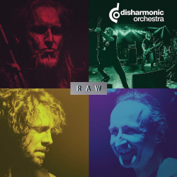 "Disharmonic Orchestra ""Raw"" (12"")"