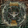 "Infinite Defilement/Perverted Dexterity ""Infinite Dexterity"" (CD)"