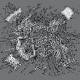 "Golem Of Gore/Human Pancake/Yakisoba/Serotonin Leakage ""The Ultimate Torture Of Modern Music"" (CD)"