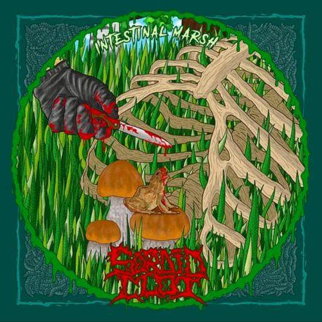 "Sordid Clot/Hydropsy ""Intestinal Marsh/Gore Grind Casino"" (CD)"