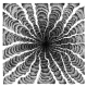 "Venomous Skeleton ""Drowning In Circles"" (CD)"